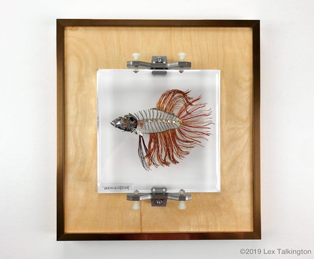Lex Talkingotn betta fish sculpture