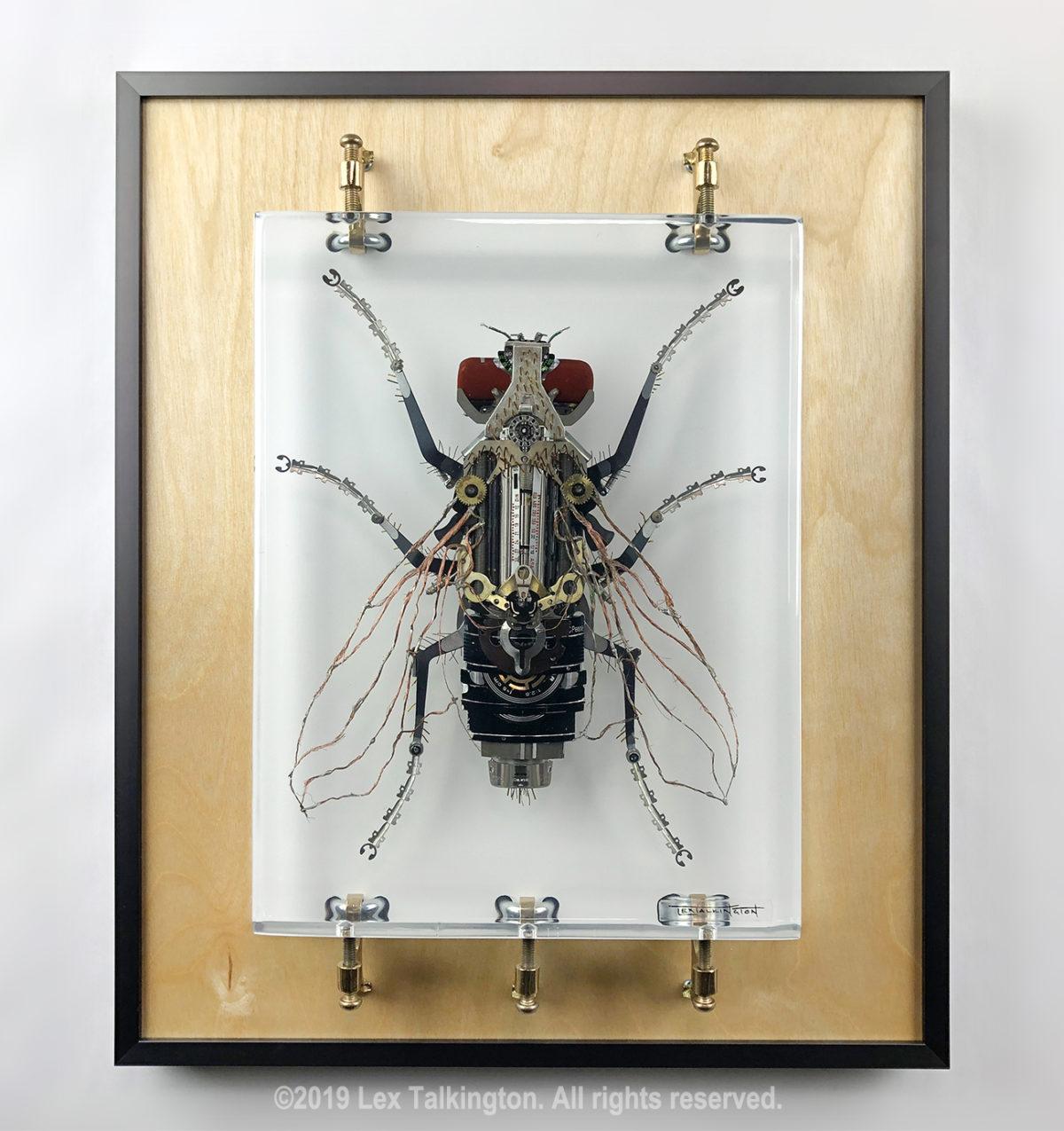 Lex Talkington mechfossil fly sculpture