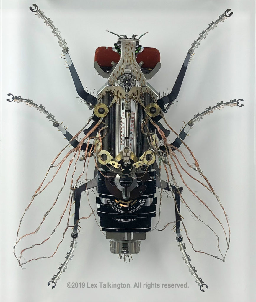 Lex Talkington mechfossil fly sculpture
